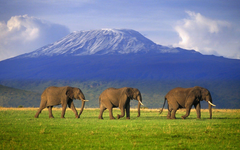 MOUNT KILIMANJARO my daughter s goal is to climb this some day
