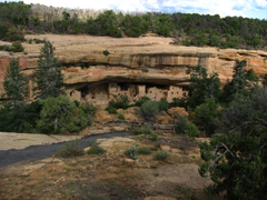 File First View of Spruce Tree House Mesa Verde National Park