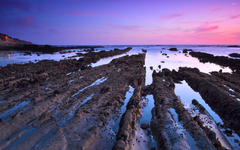 Mud trails towards the ocean wallpapers