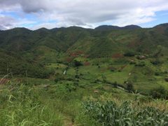 Walking across Malawi s Nyika Plateau to Livingstonia Jumping Jazza