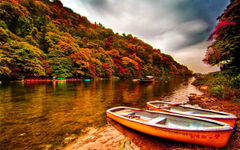 Boats on the riverbank wallpapers