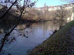 Basse Ville Fribourg At Riverbank