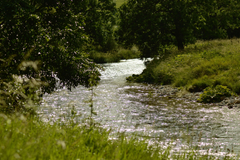 bright river river riverbank sparkling stream sunlight 4k