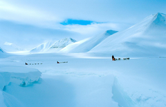 In Svalbard wallpapers