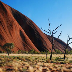 InterfaceLIFT Wallpaper Uluru