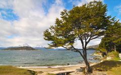 Picture Argentina Isla Grande de Tierra del Fuego Ushuaia 1920x1200