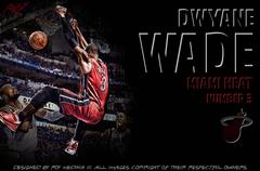 Dwyane Wade Basketball