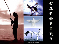 Martial Art Capoeira Wallpapers Martial Art Wallpapers Pictures