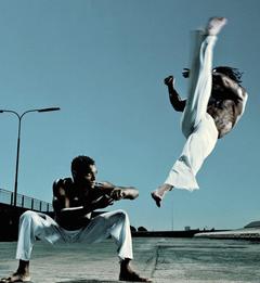 Martial Arts Screensavers and Wallpapers