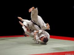 Newest Jiu Jitsu Image