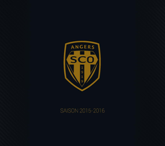 Angers SCO Wallpapers 2