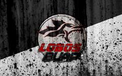 Descargar fondos de pantalla 4k FC Lobos BUAP el grunge la Liga