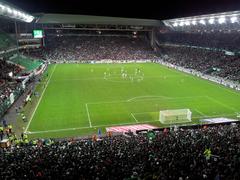 Stade Geoffroy