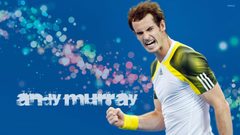 Andy Murray 3 wallpapers