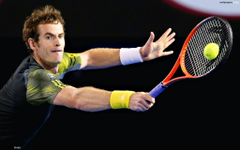 Handsome Andy Murray HD Wallpapers