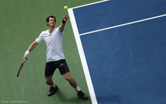 andy murray tennis player hd widescreen wallpapers male tennis