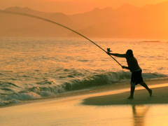 Wallpapers For Hd Saltwater Fishing Wallpapers