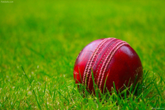 AIW 27 Cricket Full HD Pictures Wallpapers
