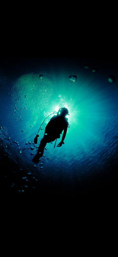 Deep Blue Green Ocean Dive