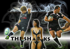 Offside Super Rugby Predictions 2013 Sport Babes Wallpapers