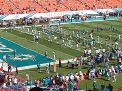Dolphins rookie Jarvis Landry stays in his place