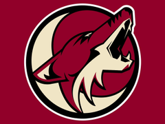 SportsNet Broadcaster Weighs In On Arizona Coyotes Future