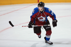 National Hockey League Rookie Ladder November 2013