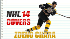 Hockey player Boston Zdeno Chara wallpapers and image