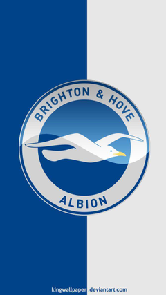 Brighton and Hove Albion moblie backgrounds by Kingwallpapers on