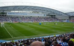 Brighton Hove Albion F C
