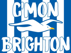 Brighton and Hove Albion Football Club Wallpapers by flyingorion on