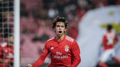 Registo mágico coloca Félix num restrito lote com Messi Neymar e Mbappé
