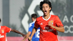 Manchester Duo Join Arsenal in Chase for Benfica Youngster