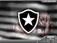 Escudo Botafogo 4K HD Wallpapers