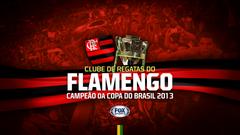 Baixe o wallpapers do Flamengo campeão da Copa do Brasil