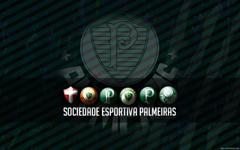 SEP Palmeiras Metal wallpapers wallpapers