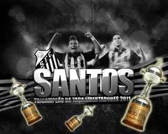 Wallpapers Santos Campeao Da Libertadores