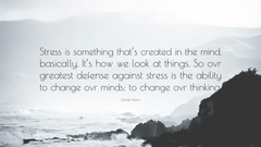 Goldie Hawn Quote Stress is something that s created in the mind