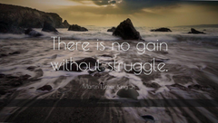 martin luther king jr quote there is no gain without struggle