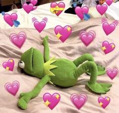 kermit is sooo cute like dis bro