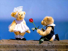 Romance Tender Teddy Bears Wallpapers Hd
