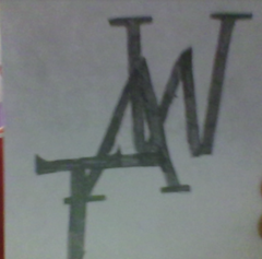 TAW Turtles Always Win My Logo