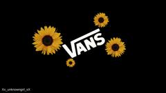 Sunflowers Vans tell me what else should i do