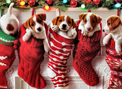 Pups in a Stocking