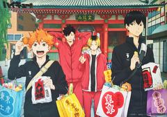 Karasuno and Nekoma wallpaper hd