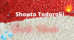 Shouto Todoroki name