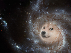 galaxy doge