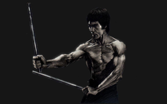 bruce lee with skill