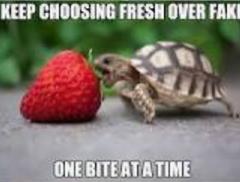 one bite atta time