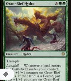 Oran Rief Hydra